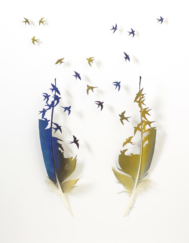 Arias Wedding - Chris Maynard - two feathers, one blue, one yellow, cut to look like birds taking flight and crossing each others' paths