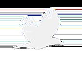 strange birds Logo